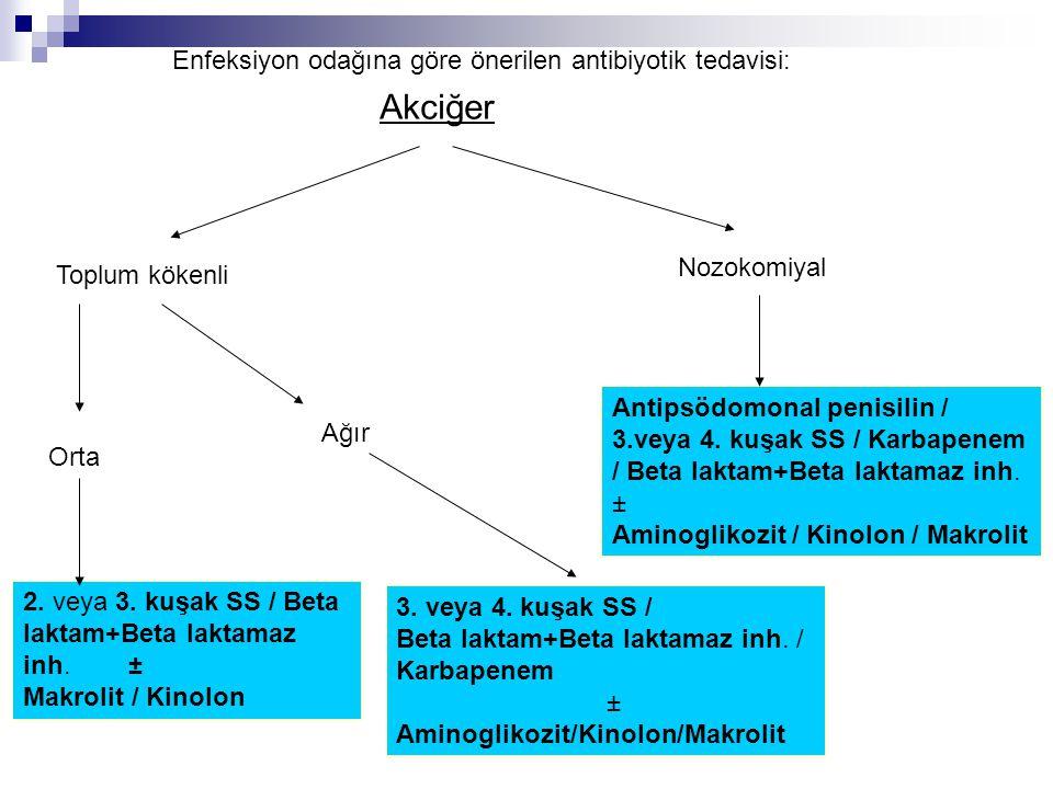 3. veya 4. kuşak SS / Beta laktam+Beta laktamaz inh. / Karbapenem ± Aminoglikozit/Kinolon/Makrolit Toplum kökenli Nozokomiyal Orta Ağır 2. veya 3. kuş