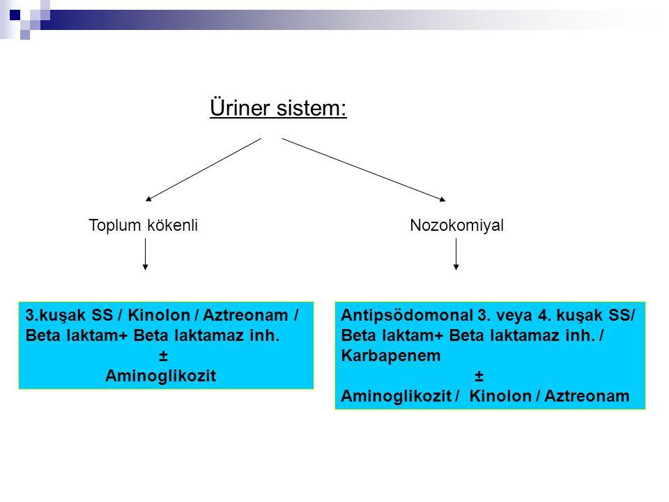 Üriner sistem: Toplum kökenli Nozokomiyal 3.kuşak SS / Kinolon / Aztreonam / Beta laktam+ Beta laktamaz inh. ± Aminoglikozit Antipsödomonal 3. veya 4.