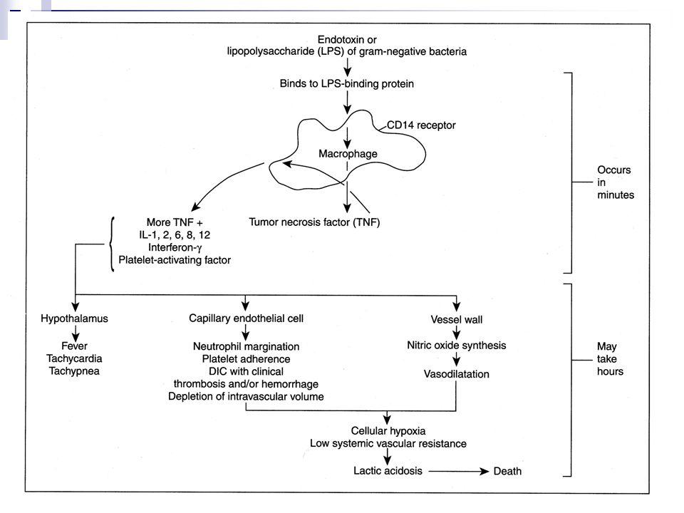 Klinik belirti ve bulgular: Belirti ve bulgu:  Ateş veya hipotermi  Üşüme ve titreme  Hiperventilasyon  Taşikardi  Deri lezyonları  Bilinç değişikliği Komplikasyon:  Hipotansiyon  Kanama  Trombositopeni  Lökopeni  Organ yetmezliği AC: ARDS Bb: Oligüri, anüri, asidoz KC: Sarılık Kalp: KKY