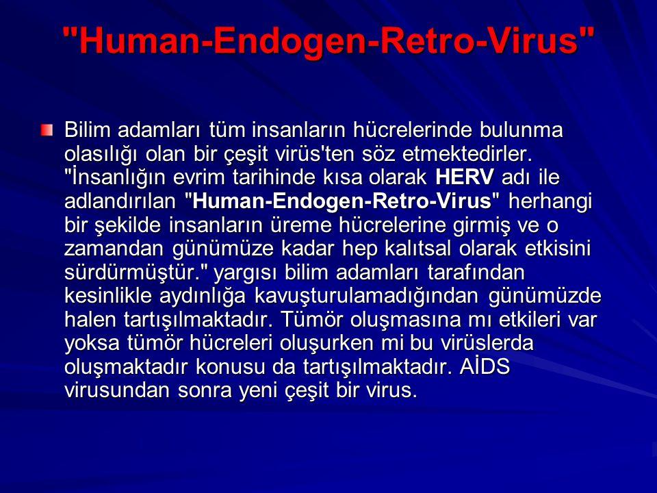 Human-Endogen-Retro-Virus Bilim adamları tüm insanların hücrelerinde bulunma olasılığı olan bir çeşit virüs ten söz etmektedirler.