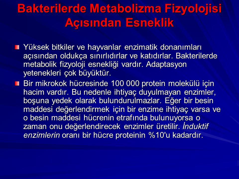 Bakterilerde Metabolizma Fizyolojisi Açısından Esneklik Yüksek bitkiler ve hayvanlar enzimatik donanımları açısından oldukça sınırlıdırlar ve katıdırl
