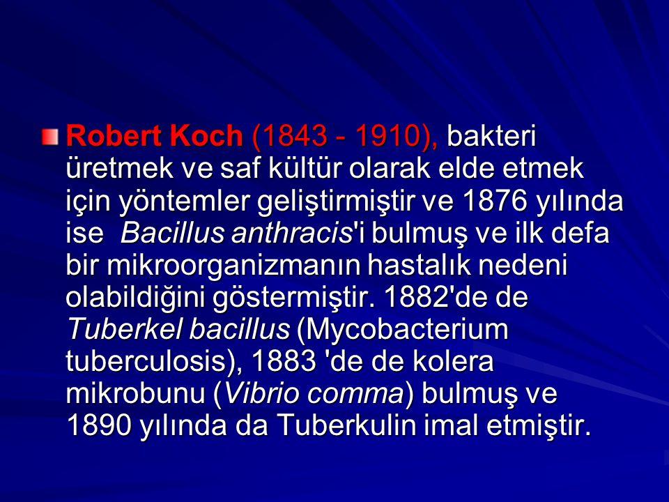 Robert Koch (1843 - 1910), bakteri üretmek ve saf kültür olarak elde etmek için yöntemler geliştirmiştir ve 1876 yılında ise Bacillus anthracis'i bulm