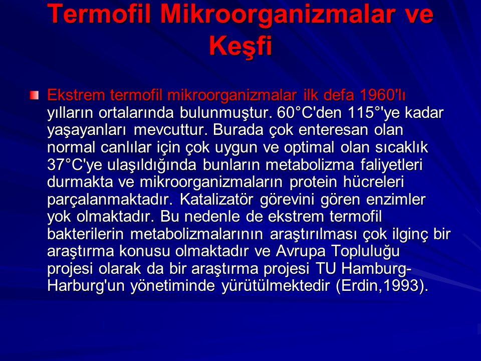 Termofil Mikroorganizmalar ve Keşfi Ekstrem termofil mikroorganizmalar ilk defa 1960'lı yılların ortalarında bulunmuştur. 60°C'den 115°'ye kadar yaşay