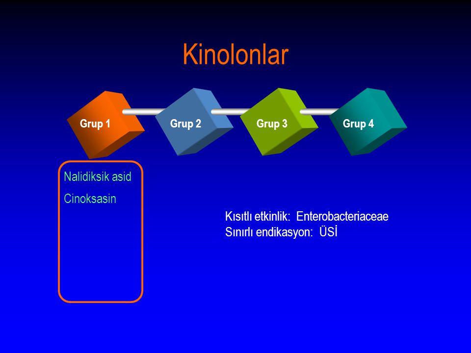 Kinolonlar Grup 1Grup 2Grup 3Grup 4 Nalidiksik asid Cinoksasin Kısıtlı etkinlik: Enterobacteriaceae Sınırlı endikasyon: ÜSİ