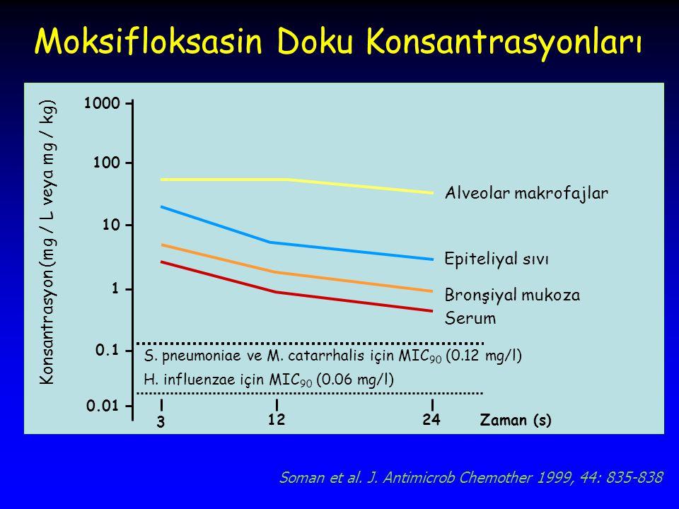 Konsantrasyon (mg / L veya mg / kg) Alveolar makrofajlar Epiteliyal sıvı Bronşiyal mukoza Serum S.