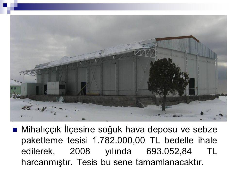Mihalıççık İlçesine soğuk hava deposu ve sebze paketleme tesisi 1.782.000,00 TL bedelle ihale edilerek, 2008 yılında 693.052,84 TL harcanmıştır. Tesis