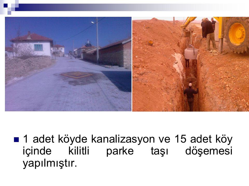1 adet köyde kanalizasyon ve 15 adet köy içinde kilitli parke taşı döşemesi yapılmıştır.
