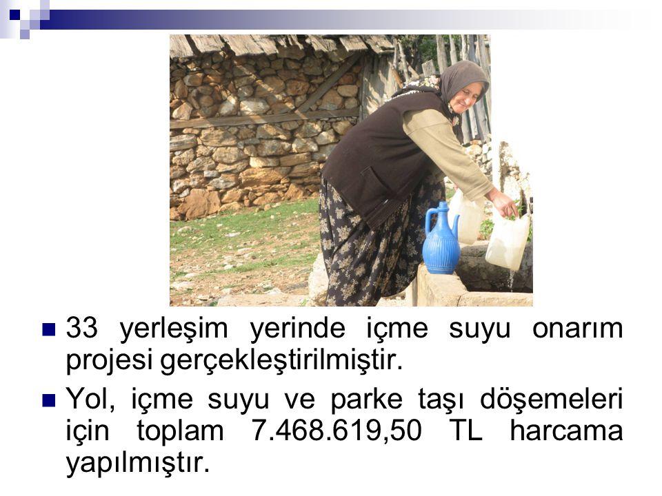 33 yerleşim yerinde içme suyu onarım projesi gerçekleştirilmiştir. Yol, içme suyu ve parke taşı döşemeleri için toplam 7.468.619,50 TL harcama yapılmı