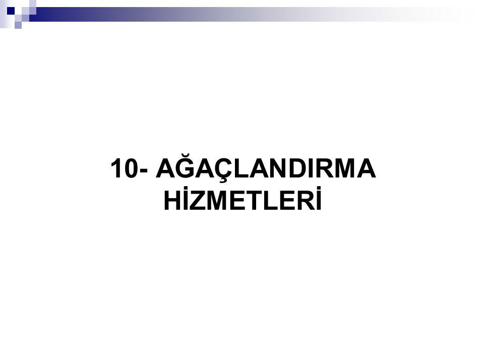 10- AĞAÇLANDIRMA HİZMETLERİ