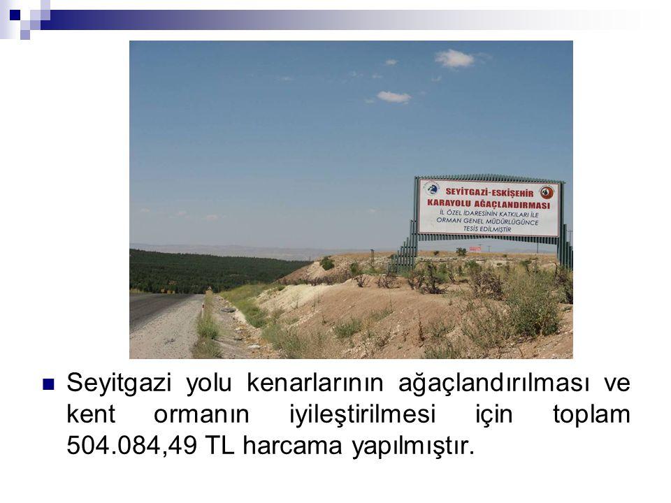 Seyitgazi yolu kenarlarının ağaçlandırılması ve kent ormanın iyileştirilmesi için toplam 504.084,49 TL harcama yapılmıştır.