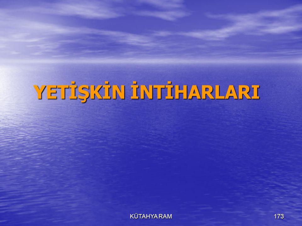 KÜTAHYA RAM173 YETİŞKİN İNTİHARLARI