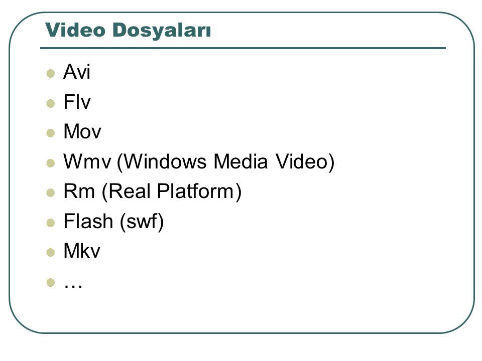 Web kullanıcı ve sunucu programları