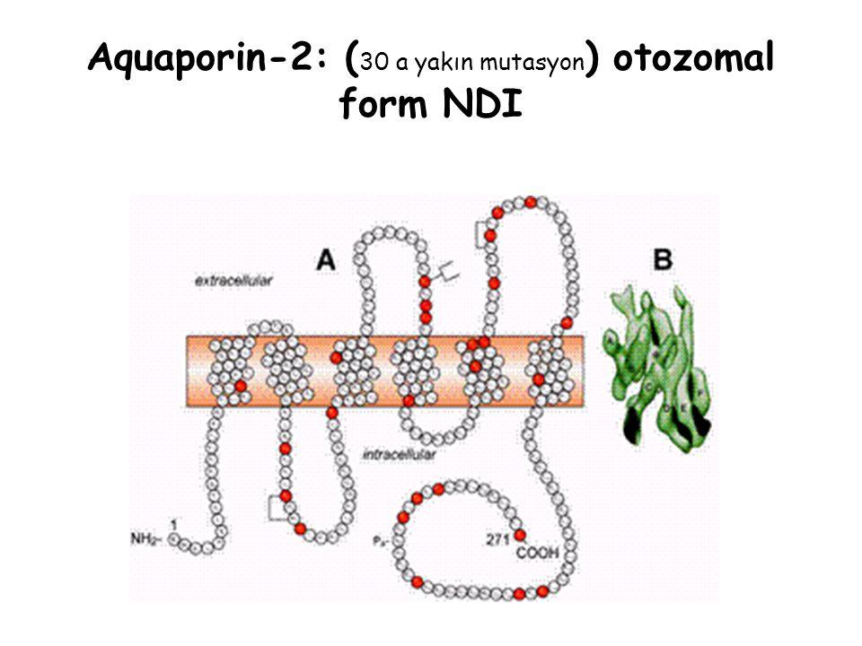 Aquaporin-2: ( 30 a yakın mutasyon ) otozomal form NDI