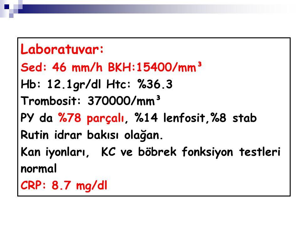 Laboratuvar: Sed: 46 mm/h BKH:15400/mm³ Hb: 12.1gr/dl Htc: %36.3 Trombosit: 370000/mm³ PY da %78 parçalı, %14 lenfosit,%8 stab Rutin idrar bakısı olağan.