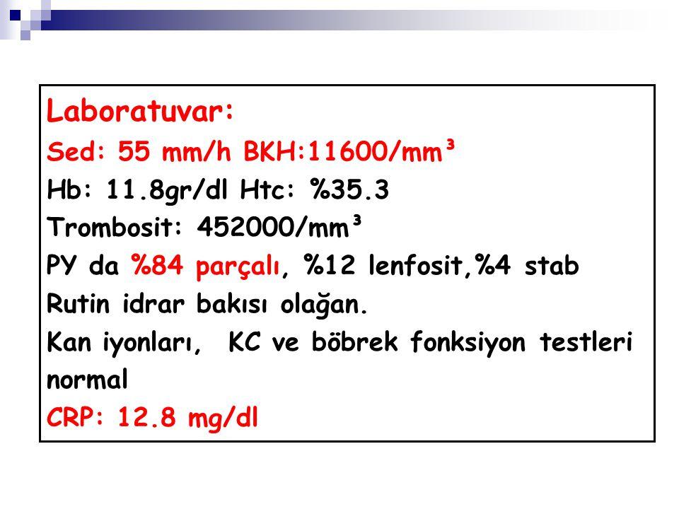 Laboratuvar: Sed: 55 mm/h BKH:11600/mm³ Hb: 11.8gr/dl Htc: %35.3 Trombosit: 452000/mm³ PY da %84 parçalı, %12 lenfosit,%4 stab Rutin idrar bakısı olağan.