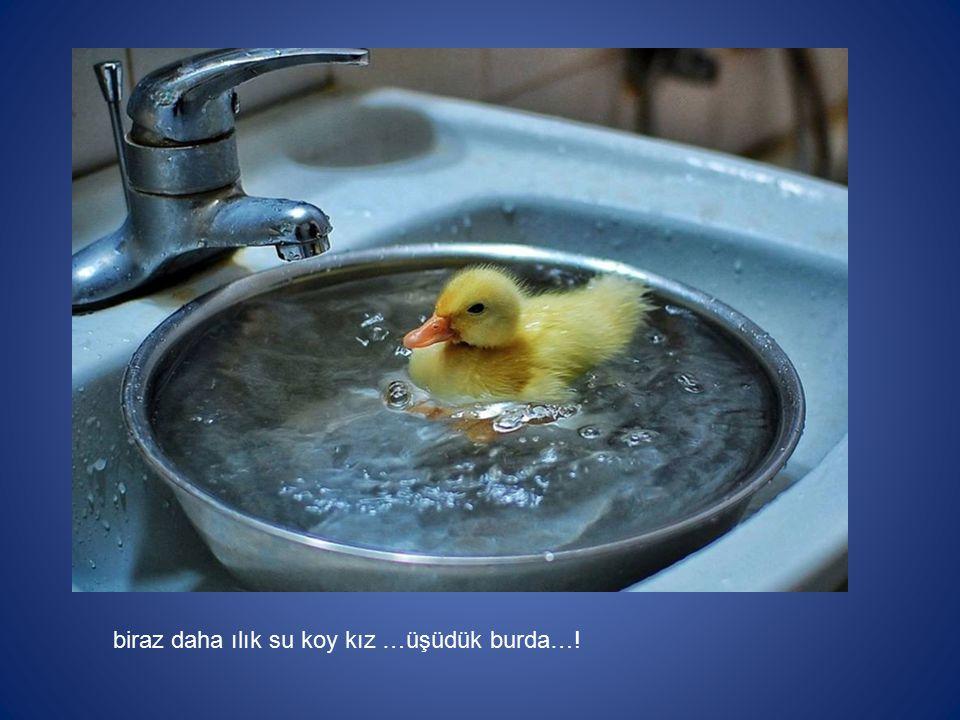 biraz daha ılık su koy kız …üşüdük burda…!