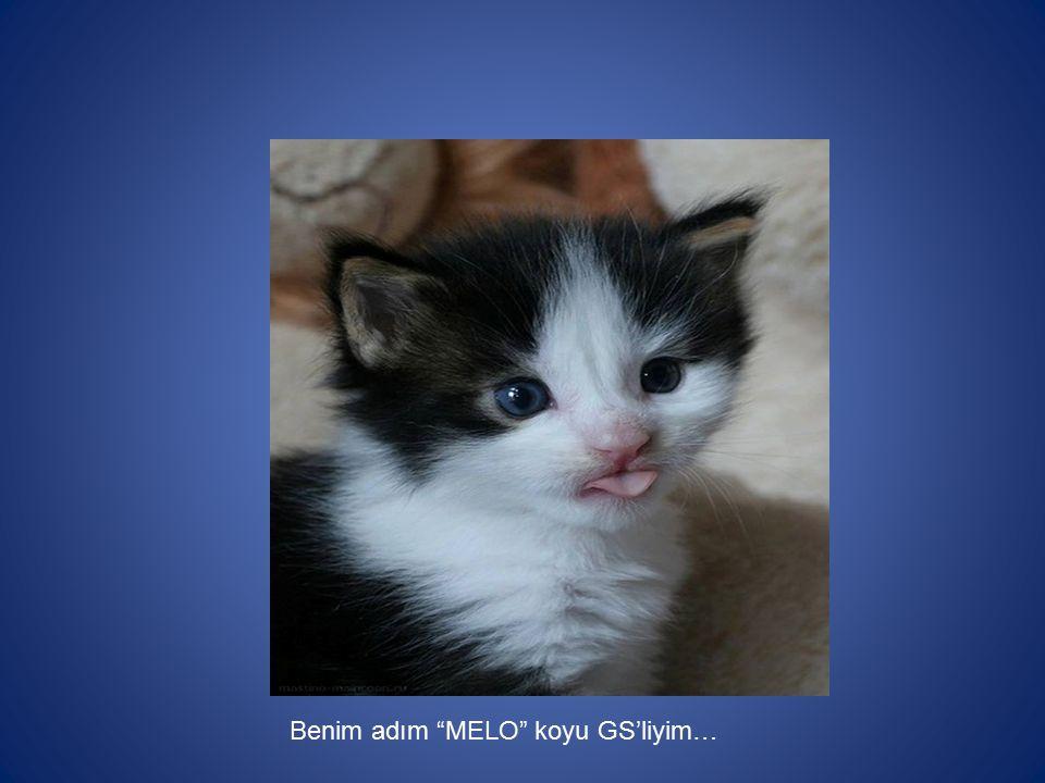 """Benim adım """"MELO"""" koyu GS'liyim…"""
