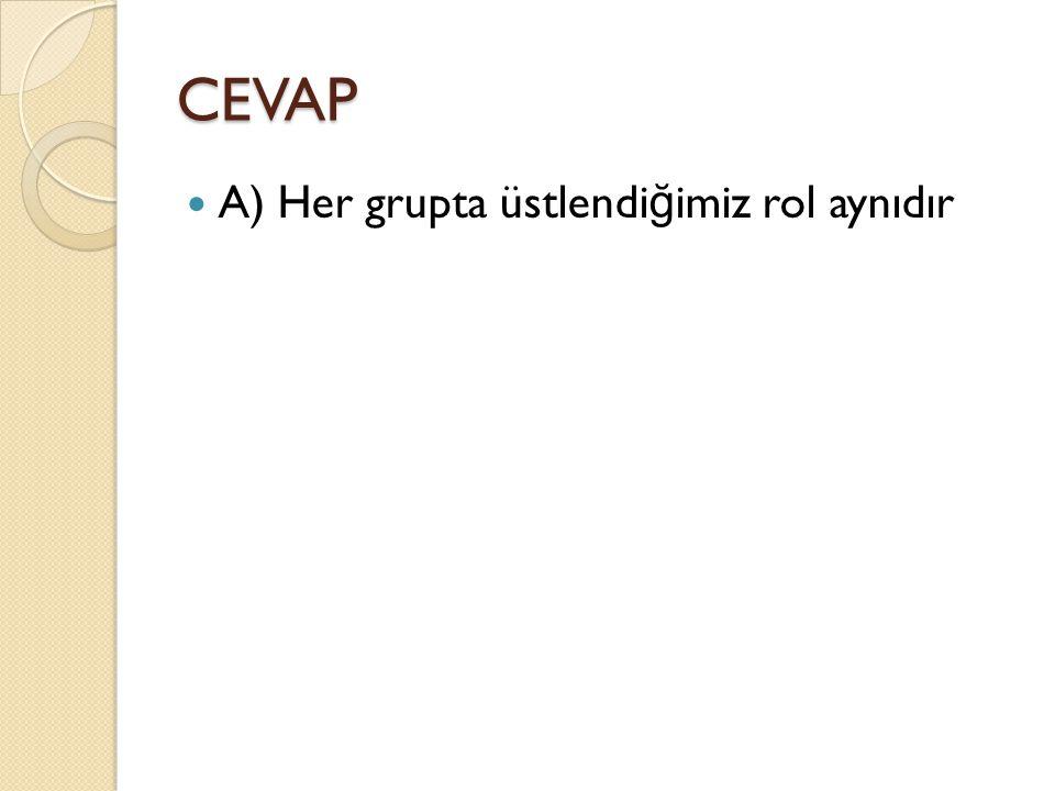 CEVAP A) Her grupta üstlendi ğ imiz rol aynıdır