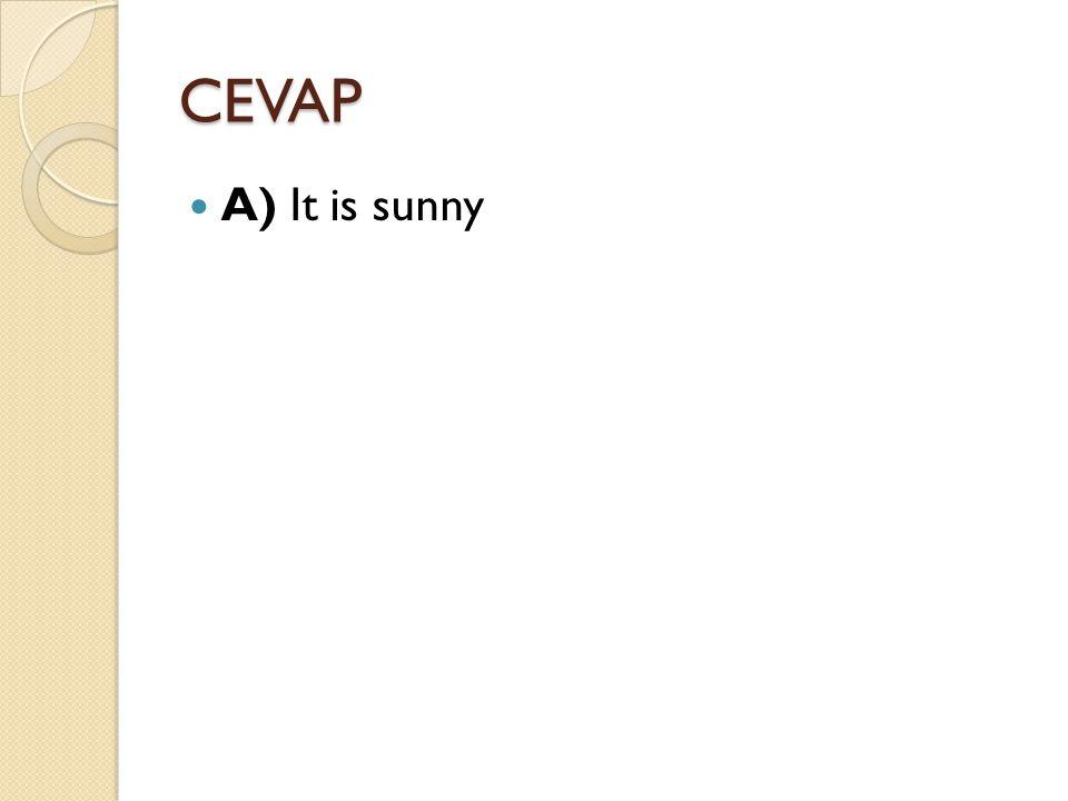 CEVAP A) It is sunny