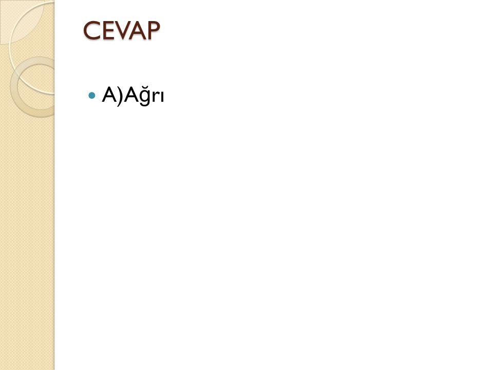CEVAP A)A ğ rı