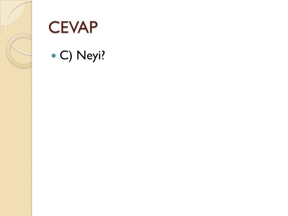 CEVAP C) Neyi?