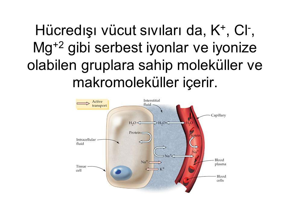 Hücredışı vücut sıvıları da, K +, Cl -, Mg +2 gibi serbest iyonlar ve iyonize olabilen gruplara sahip moleküller ve makromoleküller içerir.