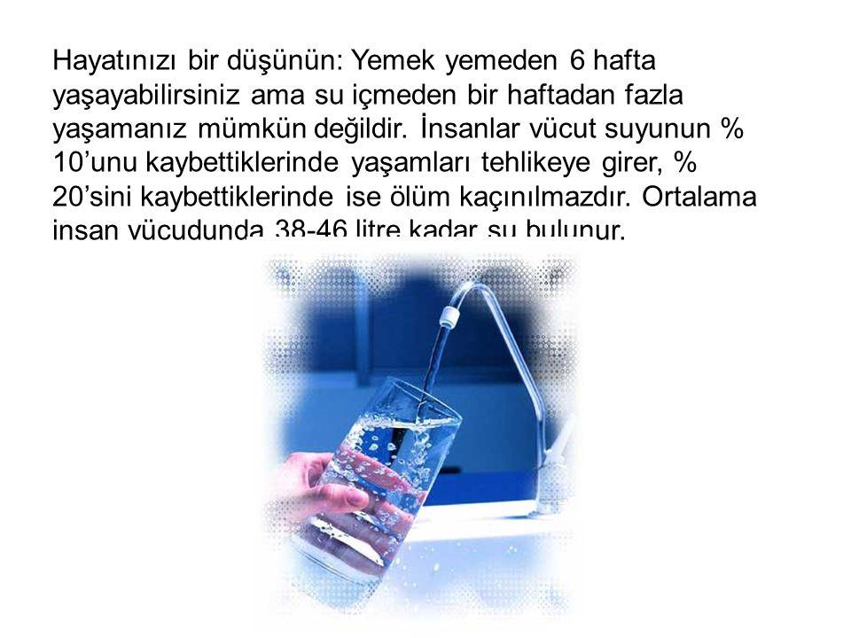 Hayatınızı bir düşünün: Yemek yemeden 6 hafta yaşayabilirsiniz ama su içmeden bir haftadan fazla yaşamanız mümkün değildir. İnsanlar vücut suyunun % 1