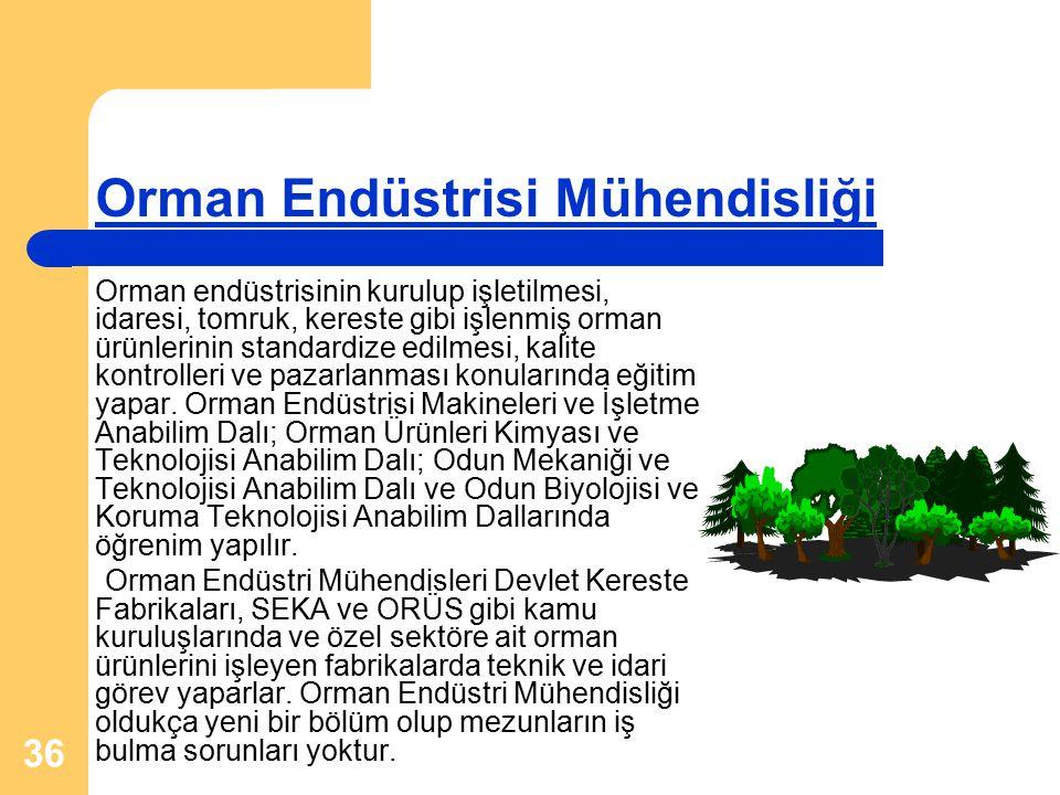36 Orman Endüstrisi Mühendisliği Orman endüstrisinin kurulup işletilmesi, idaresi, tomruk, kereste gibi işlenmiş orman ürünlerinin standardize edilmesi, kalite kontrolleri ve pazarlanması konularında eğitim yapar.