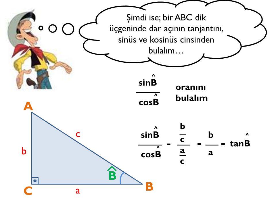 Şimdi ise; bir ABC dik üçgeninde dar açının tanjantını, sinüs ve kosinüs cinsinden bulalım… A C B a b c B sinB cosB = b a c sinB cosB oranını bulalım