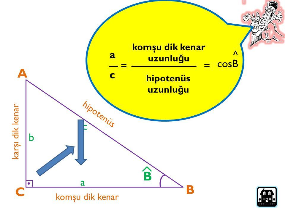 A C B karşı dik kenar komşu dik kenar hipotenüs a b c B Bir dik üçgendeki bir dar açının kosinüsü; komşu dik kenarın uzunlu ğ unun, hipotenüse uzunlu ğ una oranıdır…