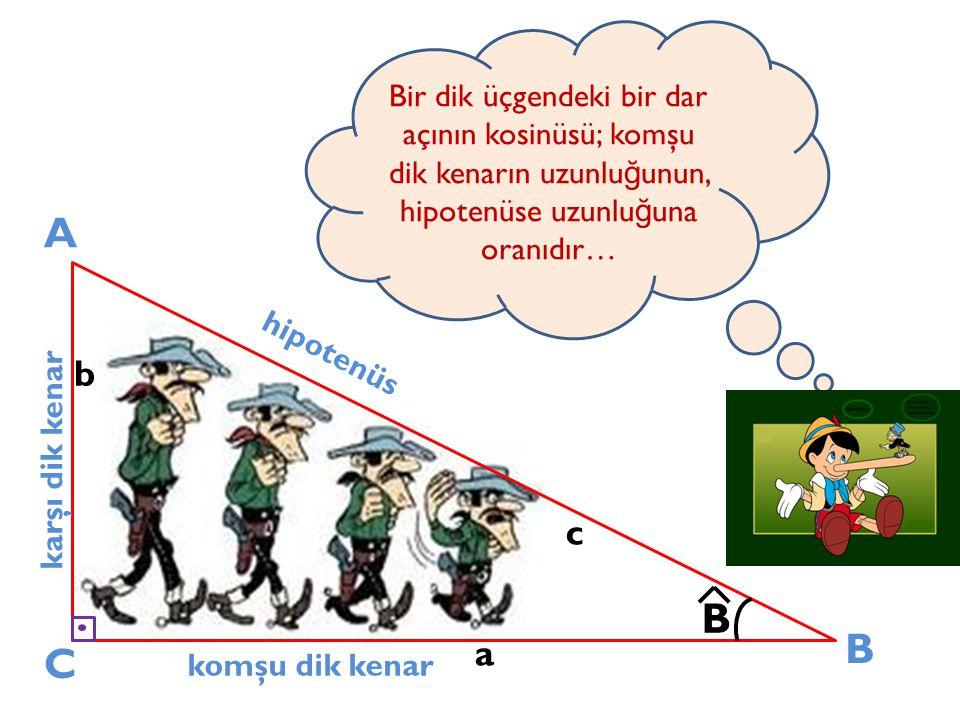 A C B karşı dik kenar komşu dik kenar hipotenüs a b c B Bir dik üçgendeki bir dar açının kosinüsü; komşu dik kenarın uzunlu ğ unun, hipotenüse uzunlu