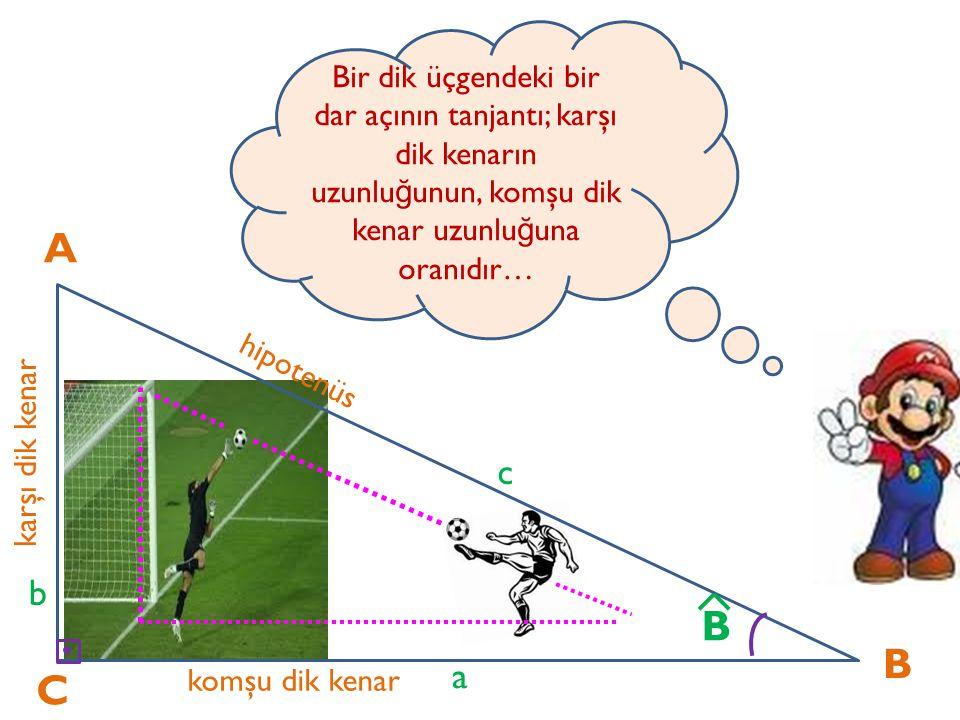 A C B karşı dik kenar komşu dik kenar hipotenüs a b c B komşu dik kenar uzunlu ğ u karşı dik kenar uzunlu ğ u = a b = cotB ^