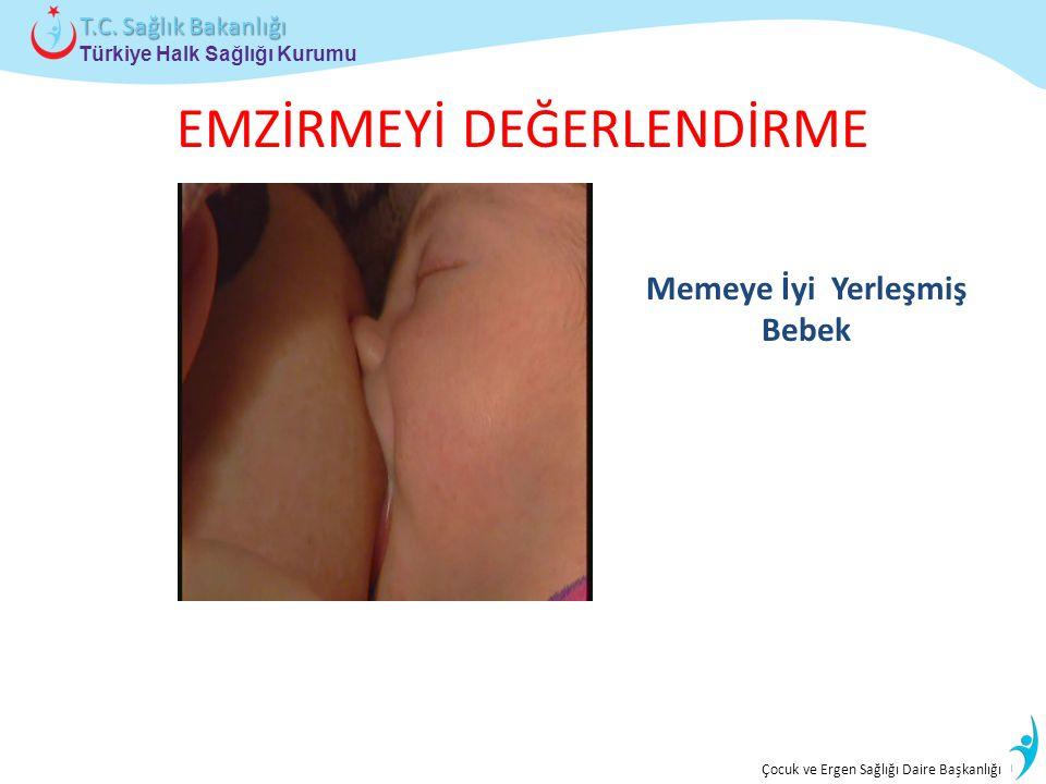 İstatistik ve Bilgi İşlem Daire Başkanlığı Türkiye Halk Sağlığı Kurumu T.C. Sağlık Bakanlığı Çocuk ve Ergen Sağlığı Daire Başkanlığı EMZİRMEYİ DEĞERLE