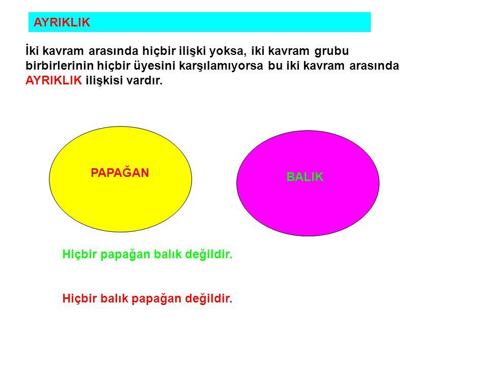 AYRIKLIK İki kavram arasında hiçbir ilişki yoksa, iki kavram grubu birbirlerinin hiçbir üyesini karşılamıyorsa bu iki kavram arasında AYRIKLIK ilişkisi vardır.