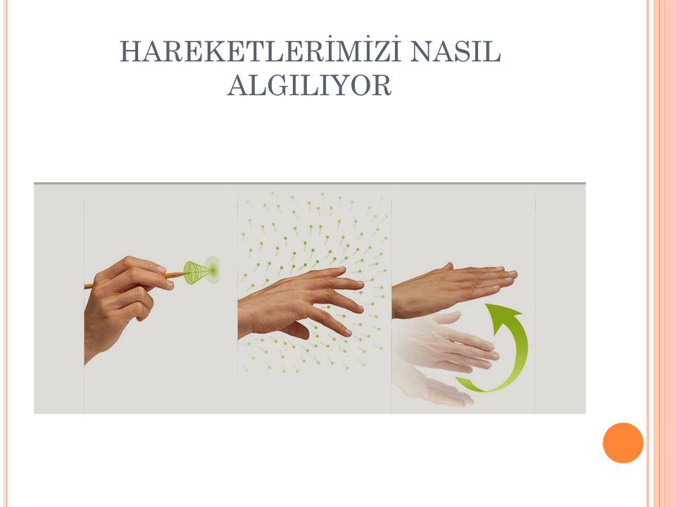 HAREKETLERİMİZİ NASIL ALGILIYOR