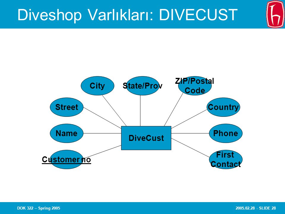 2005.02.28 - SLIDE 28DOK 322 – Spring 2005 Diveshop Varlıkları: DIVECUST Name Customer no Street State/ProvCity ZIP/Postal Code Country First Contact Phone DiveCust