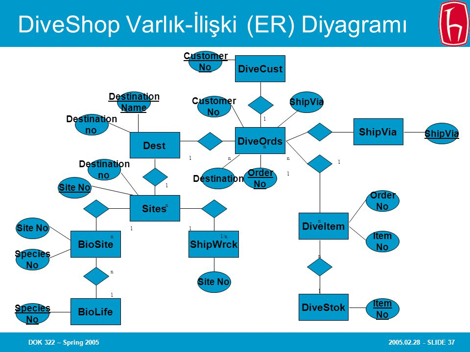 2005.02.28 - SLIDE 37DOK 322 – Spring 2005 DiveShop Varlık-İlişki (ER) Diyagramı Customer No ShipVia Dest Sites BioSite ShipVia ShipWrck BioLife DiveStok DiveItem DiveOrds DiveCust Customer No ShipVia Order No Order No Item No Item No Destination Name Destination Species No Site No Destination no Site No Destination no Species No Site No 1 1 1 1 1 1 1/n 1 1 n n n n n n n n 1