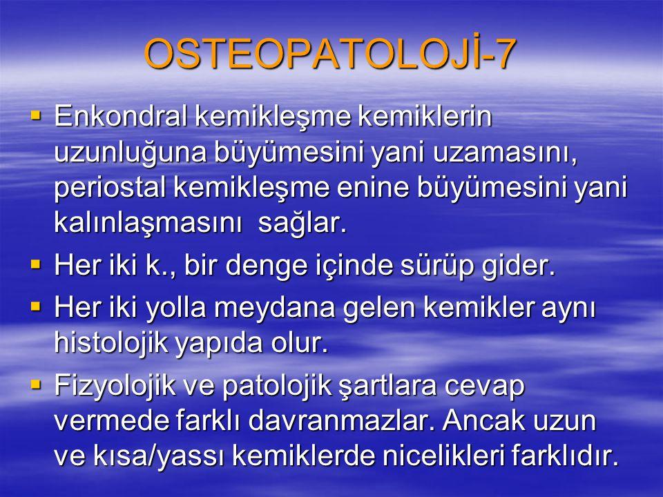 OSTEOPATOLOJİ-7  Enkondral kemikleşme kemiklerin uzunluğuna büyümesini yani uzamasını, periostal kemikleşme enine büyümesini yani kalınlaşmasını sağlar.
