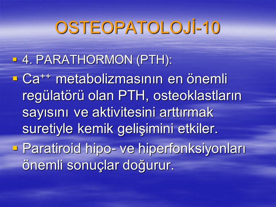 OSTEOPATOLOJİ-10  4. PARATHORMON (PTH):  Ca ++ metabolizmasının en önemli regülatörü olan PTH, osteoklastların sayısını ve aktivitesini arttırmak su