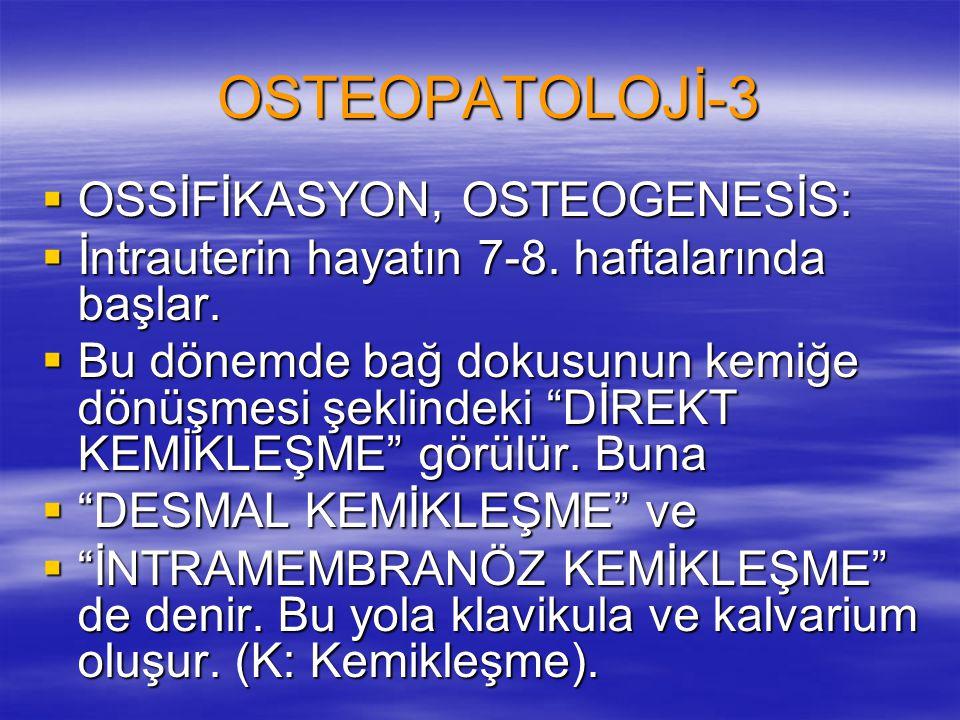 """OSTEOPATOLOJİ-3  OSSİFİKASYON, OSTEOGENESİS:  İntrauterin hayatın 7-8. haftalarında başlar.  Bu dönemde bağ dokusunun kemiğe dönüşmesi şeklindeki """""""