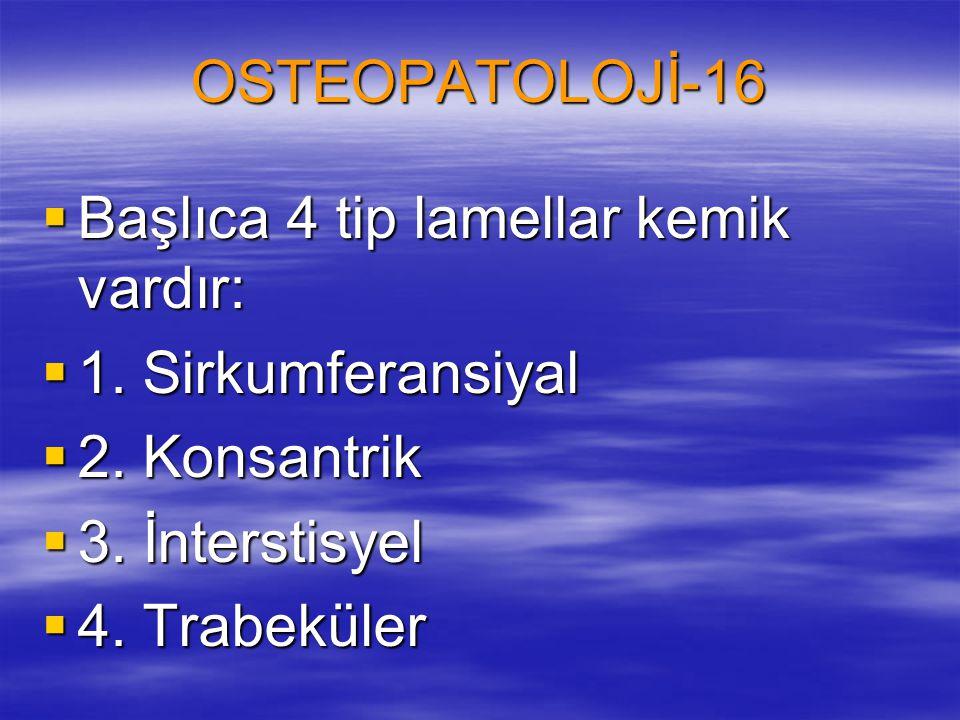 OSTEOPATOLOJİ-16  Başlıca 4 tip lamellar kemik vardır:  1. Sirkumferansiyal  2. Konsantrik  3. İnterstisyel  4. Trabeküler