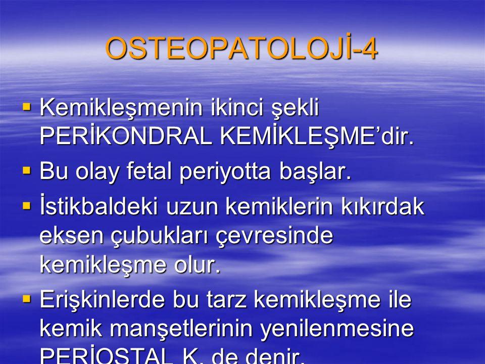 OSTEOPATOLOJİ-4  Kemikleşmenin ikinci şekli PERİKONDRAL KEMİKLEŞME'dir.  Bu olay fetal periyotta başlar.  İstikbaldeki uzun kemiklerin kıkırdak eks
