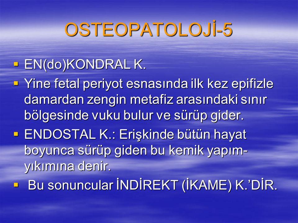 OSTEOPATOLOJİ-5  EN(do)KONDRAL K.  Yine fetal periyot esnasında ilk kez epifizle damardan zengin metafiz arasındaki sınır bölgesinde vuku bulur ve s