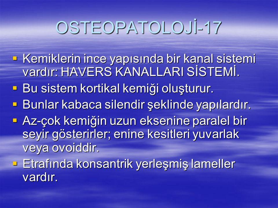 OSTEOPATOLOJİ-17  Kemiklerin ince yapısında bir kanal sistemi vardır: HAVERS KANALLARI SİSTEMİ.