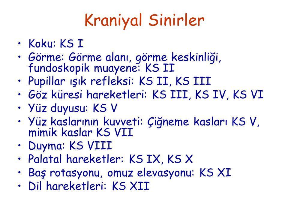 Koku: KS I Görme: Görme alanı, görme keskinliği, fundoskopik muayene: KS II Pupillar ışık refleksi: KS II, KS III Göz küresi hareketleri: KS III, KS IV, KS VI Yüz duyusu: KS V Yüz kaslarının kuvveti: Çiğneme kasları KS V, mimik kaslar KS VII Duyma: KS VIII Palatal hareketler: KS IX, KS X Baş rotasyonu, omuz elevasyonu: KS XI Dil hareketleri: KS XII