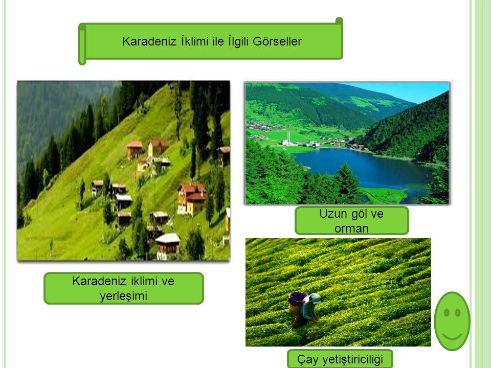Karadeniz İklimi ile İlgili Görseller Karadeniz iklimi ve yerleşimi Uzun göl ve orman Çay yetiştiriciliği