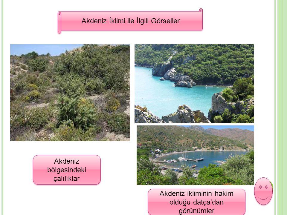 Akdeniz İklimi ile İlgili Görseller Akdeniz İklimi ile İlgili Görseller Akdeniz bölgesindeki çalılıklar Akdeniz ikliminin hakim olduğu datça'dan görün