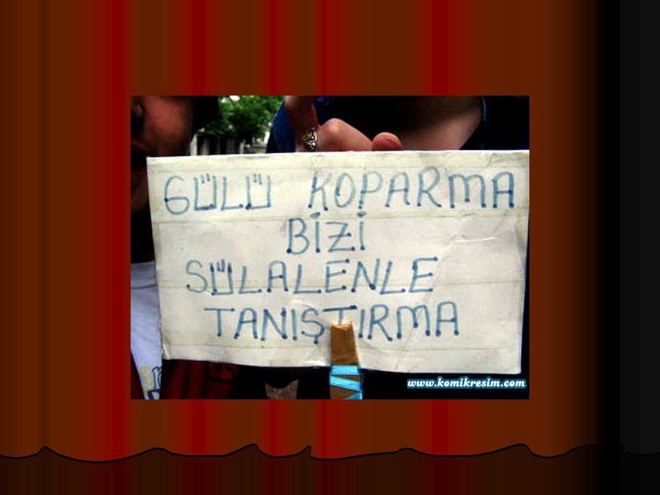 2005 YILININ KAMPANYASI ÖDÜLÜNÜ KAZANAN