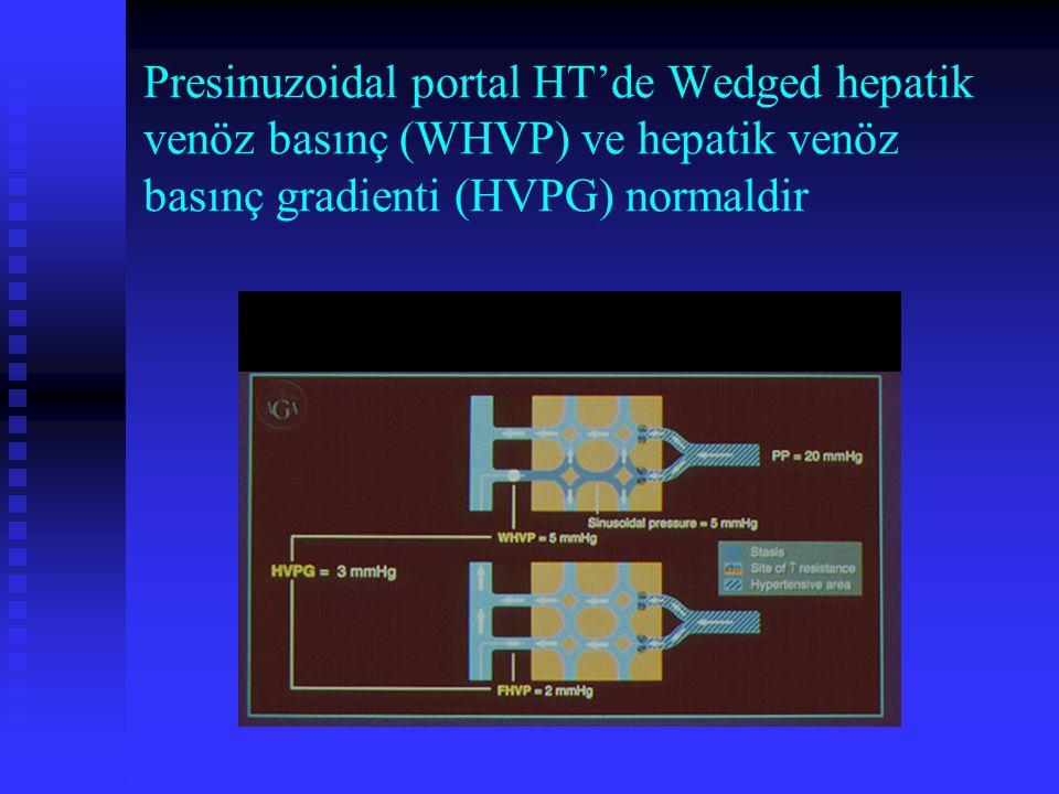 Presinuzoidal portal HT'de Wedged hepatik venöz basınç (WHVP) ve hepatik venöz basınç gradienti (HVPG) normaldir
