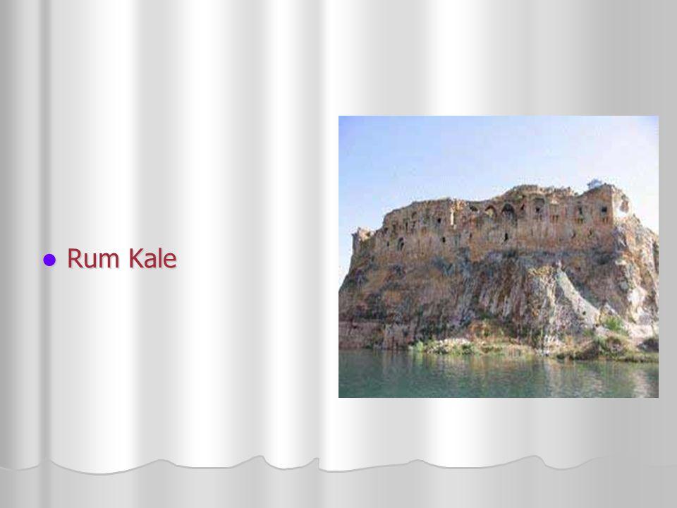 Rum Kale Rum Kale
